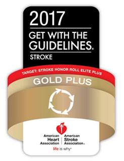 Gold Plus Award Badge