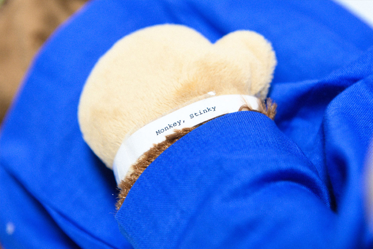 "Ezra Yost's monkey puppet wears a ""hospital"" wristband with his name, Stinky Monkey."